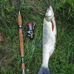 Риболов на Дрина img2379