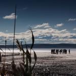 Соленото езеро Туз до Кападокия