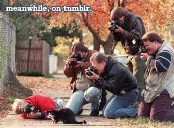 Мъките на фотографа - Фотографи и котенце